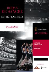 Bodas de sangre - Suite Flamenca (Rising Alternative)